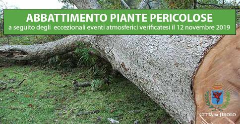 Abbattimento piante pericolose nel Comune di Jesolo a seguito degli eccezionali eventi atmosferici verificatesi il 12 novembre 2019