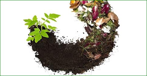 compost in omaggio presso gli ecocentri Alisea