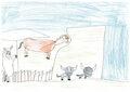 Disegni in fattoria 9